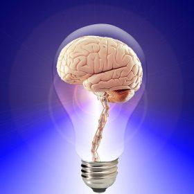Descubre cuál es tu mentalidad emprendedora