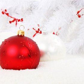(IN) Feliz Navidad